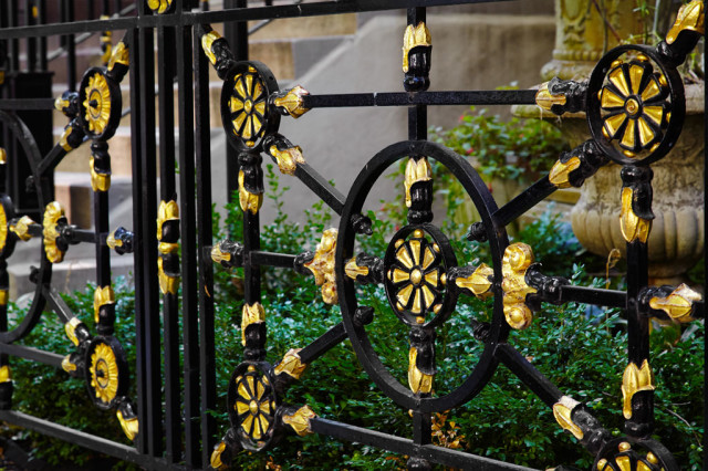 Beauty in a wrought iron gate.