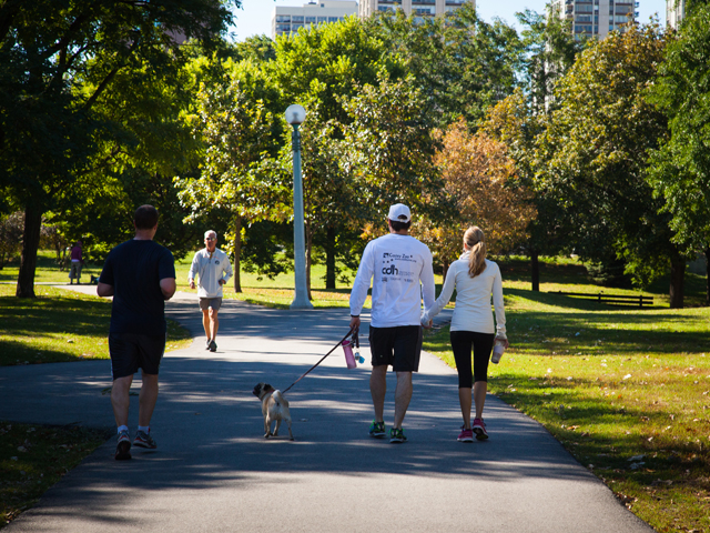 or take a walk in the park - Lincoln Park is our front yard.